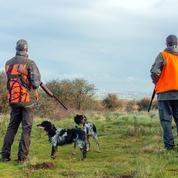 Les chasseurs, confrontés aux critiques, font des concessions
