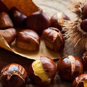 Octobre: quels sont les légumes et les fruits de saison?