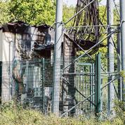 Télécoms: les opérateurs face aux actes de malveillance
