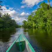 Transition écologique: et la biodiversité, alors?