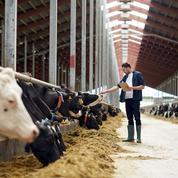 Agriculture: le revenu, nerf de la guerre du défi démographique