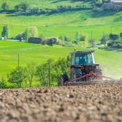 Agriculture: ces fermes qui profitent des transmissions pour grandir