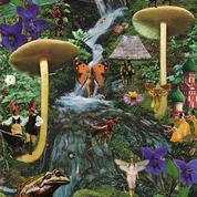Mode, design, art, sous l'emprise des champignons