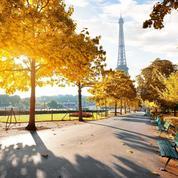 Paris achète des milliers arbres pour reverdir ses rues