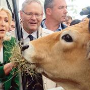 Présidentielle: Marine Le Pen, sur le terrain l'air de rien