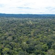 Amazonie: le Brésil resserre l'étau sur les terres indigènes