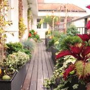 Un balcon en ville, esthétique et écoresponsable