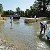 Les micropolluants infestent nos rivières