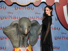 Dumbo: le cri d'alarme d'Eva Green pour les éléphants «qui disparaîtront dans dix ans»