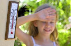 Canicule : ce qu'il se passe dans votre corps quand il fait trop chaud