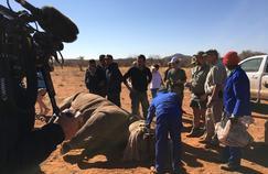 L'équipe du zoo de La Flèche, rangers en savane
