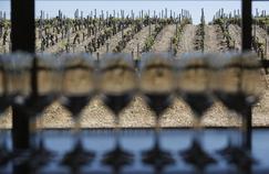 Alcool: 84% des Français attendent des campagnes de sensibilisation différentes