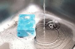 Nos éponges de cuisine abritent des millions de bactéries