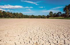 Les vagues de chaleur pourraient faire exploser la mortalité en Europe