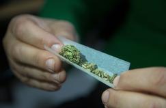 Le cannabis et les consommateurs ont changé