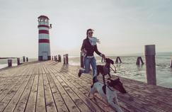 Avoir un chien serait bon pour le cœur