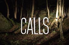 Top/flop : Calls, la série sans image qui en met plein la vue