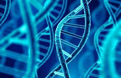Thérapie génique : un espoir majeur pour une myopathie de l'enfant