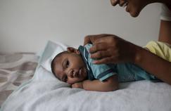 Zika : le début de la grossesse est une période à risque