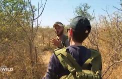Wild, la course de survie: «on a risqué la mort», un éléphant menace deux candidats