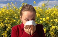 Le printemps arrive : gare aux allergies !