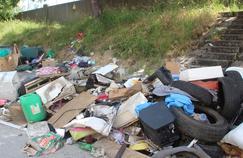 Focus sur le risque sanitaire des décharges sauvages dans Envoyé Spécial