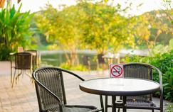 Strasbourg s'apprête à interdire la cigarette dans ses parcs