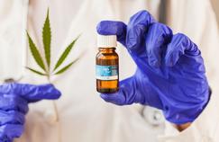 Le cannabis médical, un antidouleur hors la loi en France