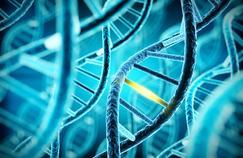 Le syndrome de Marfan, une maladie génétique rare qui touche le cœur, le squelette et les yeux