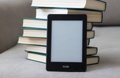 Comment choisir sa liseuse électronique ?