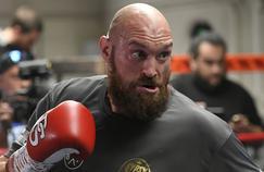 Wilder/Fury: le combat de l'année sur Canal+
