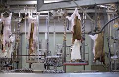 L'industrie agroalimentaire à nu sur France 2