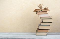 Salon du livre de Paris: obtiendrez-vous un sans-faute à ce test de français?