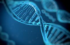La thérapie génique, un espoir sérieux pour remédier à la surdité de naissance