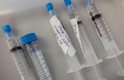 Les phages, éternels ennemis des bactéries