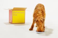 Le «Deliveroo de la nourriture pour chiens» lève 17 millions d'euros