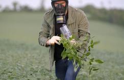 Vert de rage (France 5): le journalisme engagé de Martin Boudot