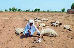 L'Inde traverse sa pire «crise d'eau»