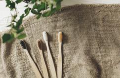 Pourquoi choisir une brosse à dents en bambou?