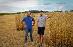 Farmr veut devenir le Facebook et le LinkedIn des agriculteurs français