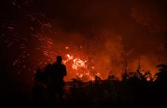 En proie à de gigantesques incendies, l'Indonésie arrête près de 200 personnes
