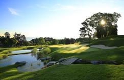 Les golfs plus green que jamais