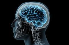 Comment les traumas psychologiques répétés affectent le cerveau