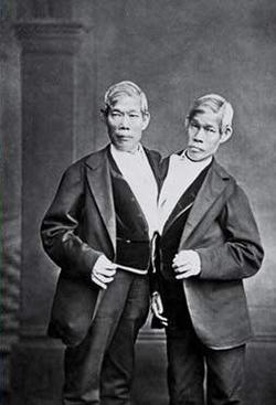 Chang et Eng Bunker sont deux Thaïlandais devenus Américains. Ils vécurent 63 ans (11 mai 1811 - 17 janvier 1874).
