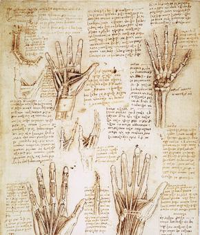 Dessin de Léonard de Vinci à l'encre et au crayon: étude de mains (vers 1510-1511)