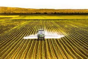 Les pesticides sont une grande source de perturbateurs endocriniens potentiels.