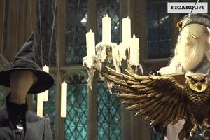 Minerva McGonagall et Dumbledore.