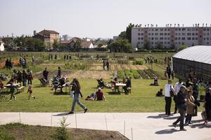 La partie exploitée par Zone Sensible à la ferme urbaine de Saint-Denis (93).