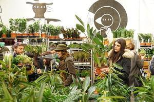 Une vente de plantes organisée par Plantes Pour Tous.