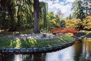Les jardins du musée Albert-Khan.